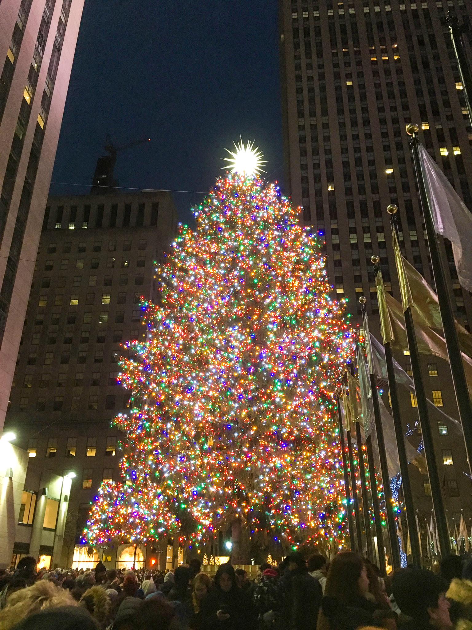 travel to new york city in december & see the tree