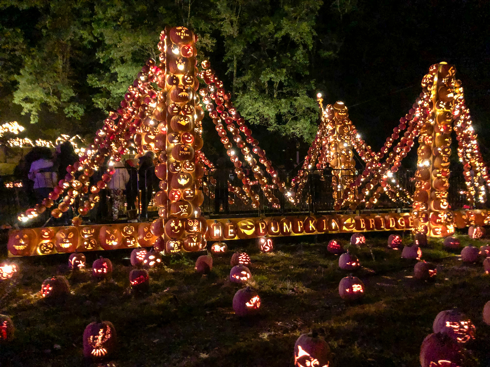 day trips from nyc fall: go to the jack o'lantern blaze