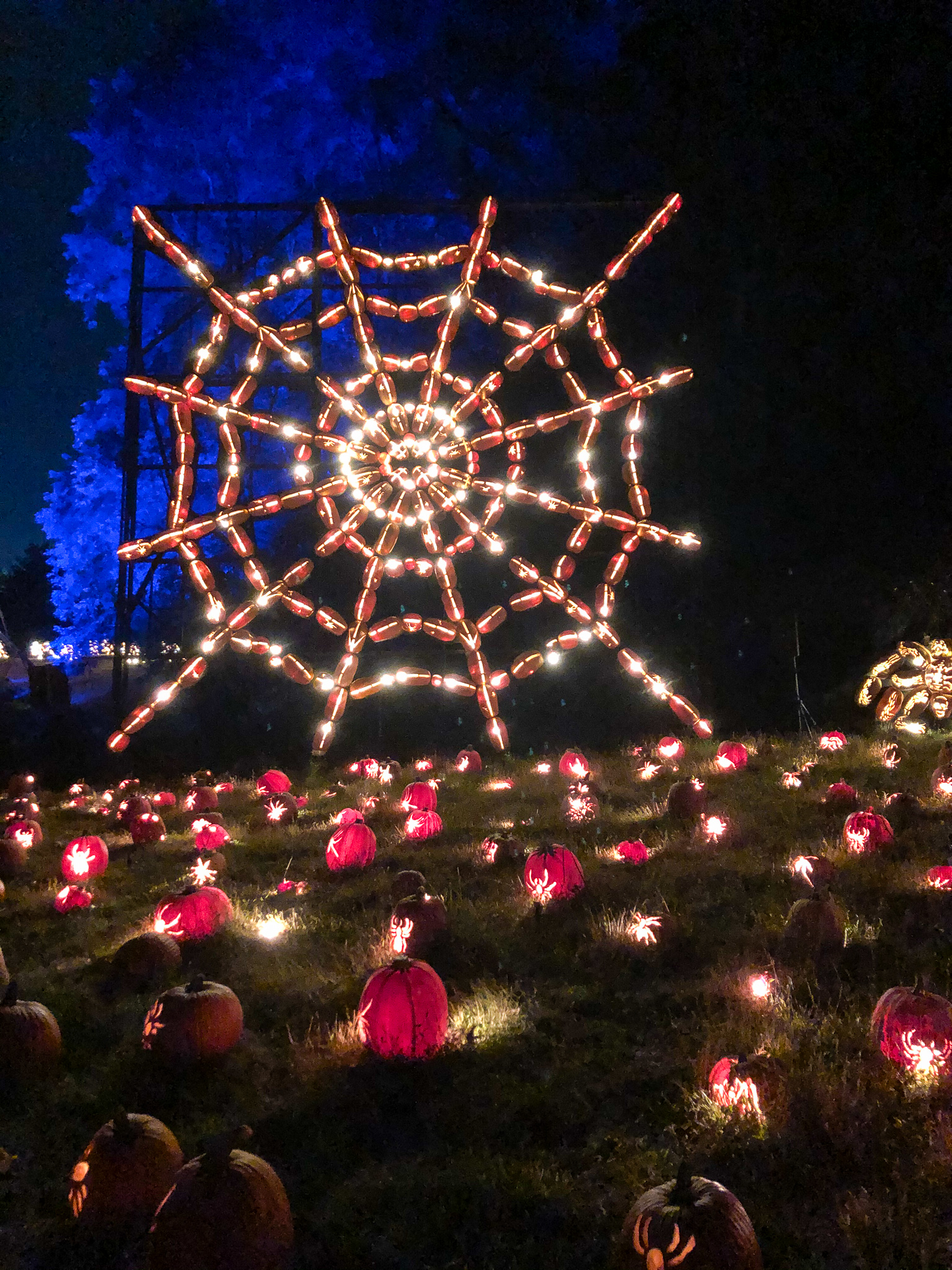 things to do in sleepy hollow new york: spiders and pumpkins