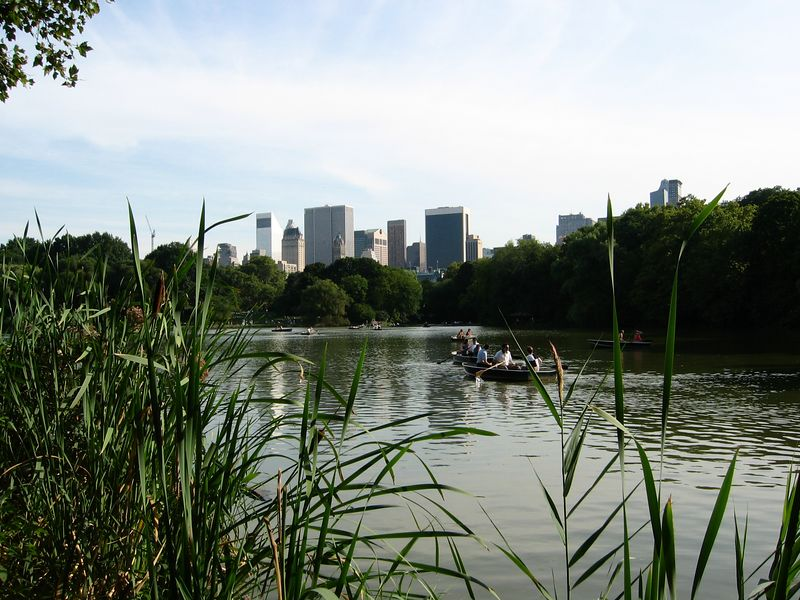 Skyline across boat pond