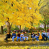 CENTRAL PARK BENCH NYC-