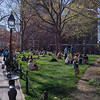 People relaxing on the lawn near Washington Square West in Washington Square Park on the first warm day of Spring, New York City