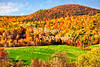 Fall Colors Cover the Hillside