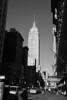 NYC_081229_086