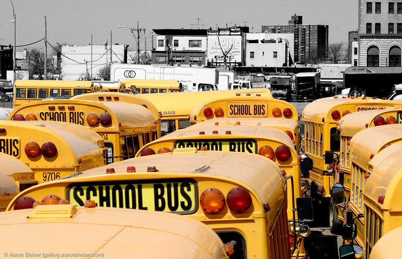 The Short Buses