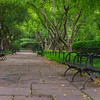 Peaceful tree enclosed seating area of the Conservatory Gardens of Central Park
