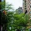 New York Project 35mm Digital Spring 16