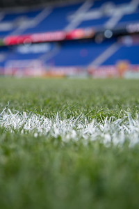 Grass is nice and ready @newyorkredbulls @onceametro @southwardsupporters @Ultras_GSU @gardenstateultras