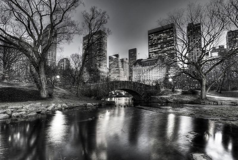 Central Park Evening8x10