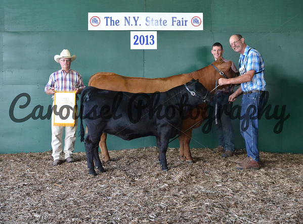 2013-NYSF-Simmental-Backdrop