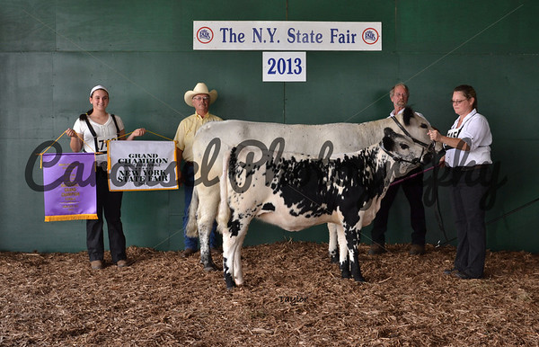 2013-NYSF-WhitePark-Backdrop