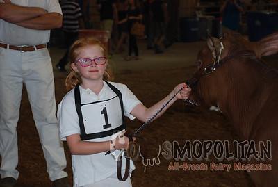 NY State Fair RW Holstein 2015