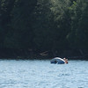 Oops, Capsized!