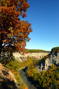 Early Fall in Letchworth State Park