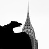 Eagle watching over  Chrysler Building