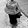 Vintage Fire Hydrant - Black and White
