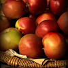 Fall Harvest - Apples in Basket