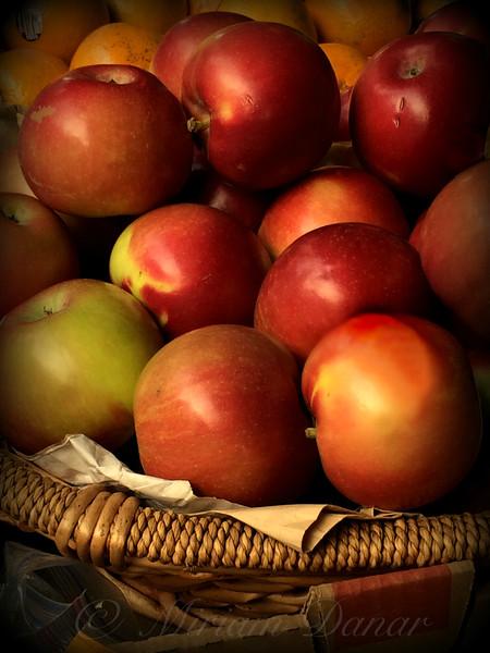 Fall Harvest - Apples in Basket