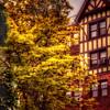 American Tudor - The Beauty of Autumn