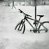 Going Nowhere Fast - Winter in New York