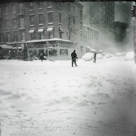 Race to the Pole - Winter in New York