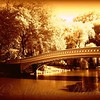 Bow Bridge, Central Park in Gold