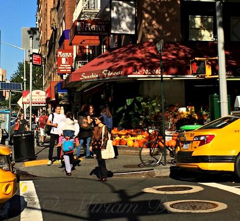 Sunny Corner - October in New York