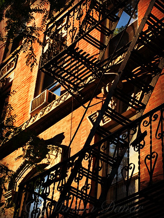 Escape from New York - New York City Fire Escapes