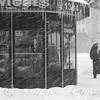 Umbrella Day - Winter in New York