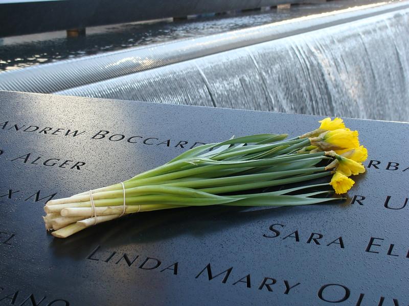 Daffodils in Memory