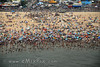 Coney Island's beach, NYC, NY, Aerial Photos - img 5 of 8.