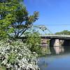 Cayuga-Seneca Canal