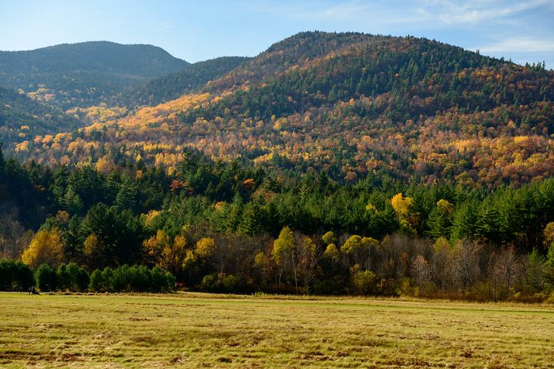 View of foliage along highway 9N. Adirondaks, New York