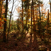 Wanika falls trail. New York