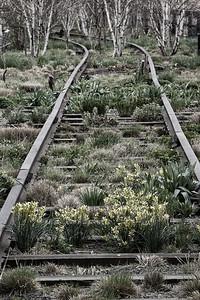 High Line tracks 2