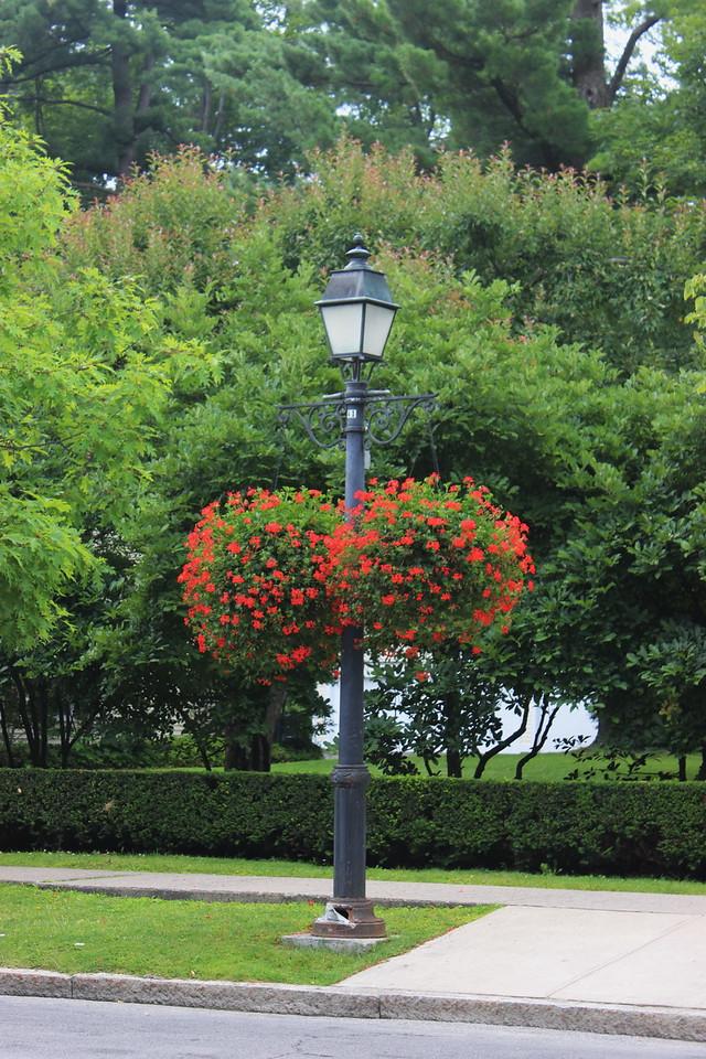 Hanging Flower Baskets on Decorative Street Lights