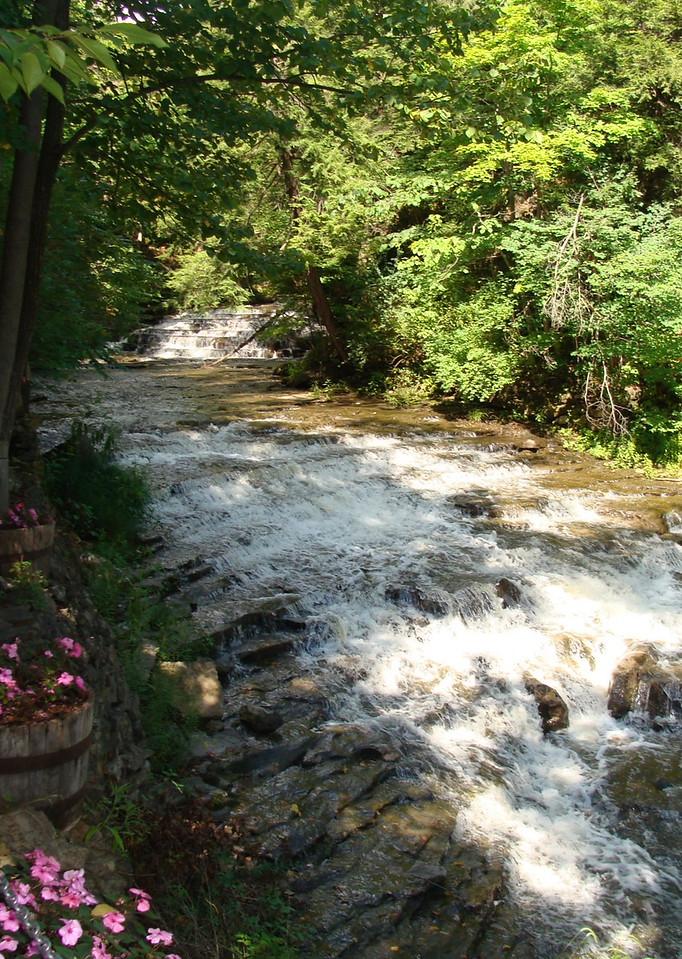 Timmerman Creek
