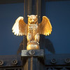 golden owl Brooklyn Public Library