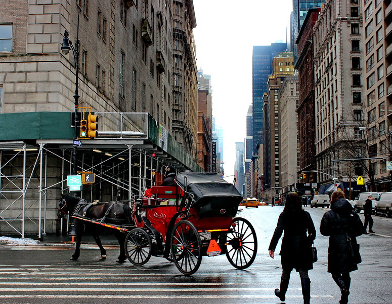 Carriage in the City
