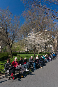bench sitters Madison Square Park spring day