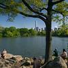 Central Park scene