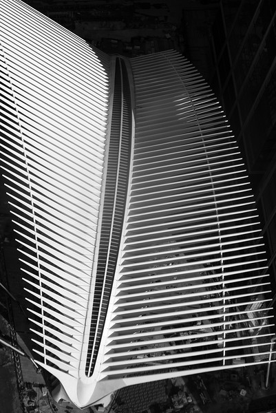 Calatrava PATH Station seen from top of WTC
