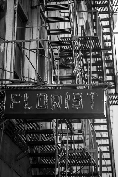 Florist neon sign w fire escapes