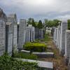 Gitel Rothman Rose Cooper Pearl Rosenfield Clara Hamowitz Fannie Schrager graves Queens cemetary