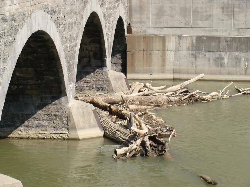 Genesee River Log Jam