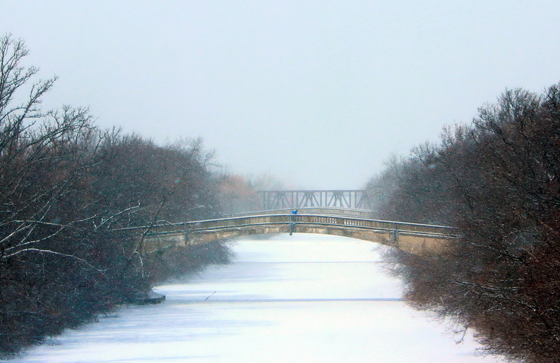 Bridges of Genesee Valley Park