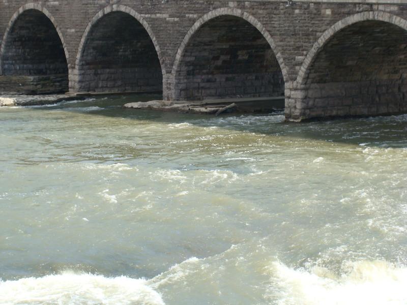 Genesee River Rapids