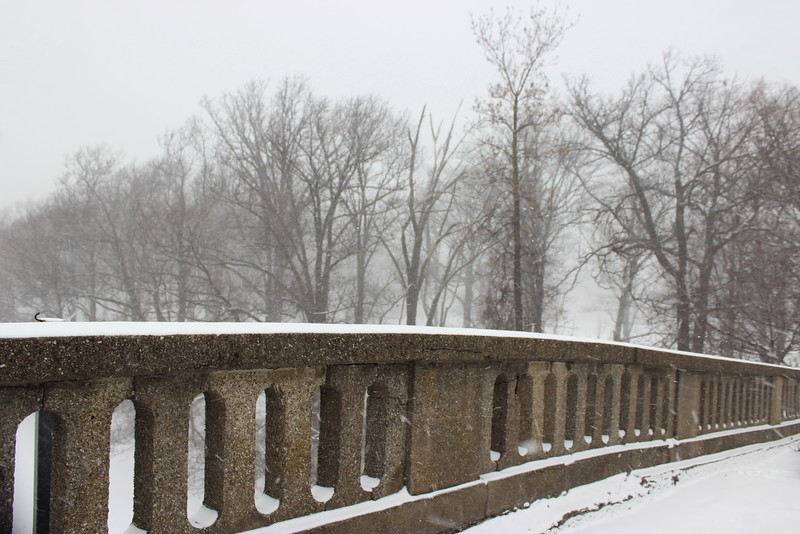 Olmsted Bridge Railing