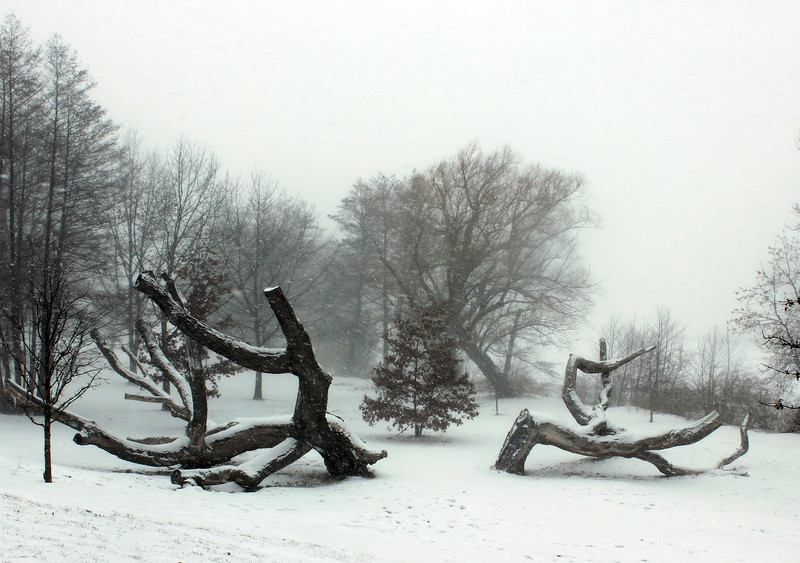 Genesee Valley Park in Winter