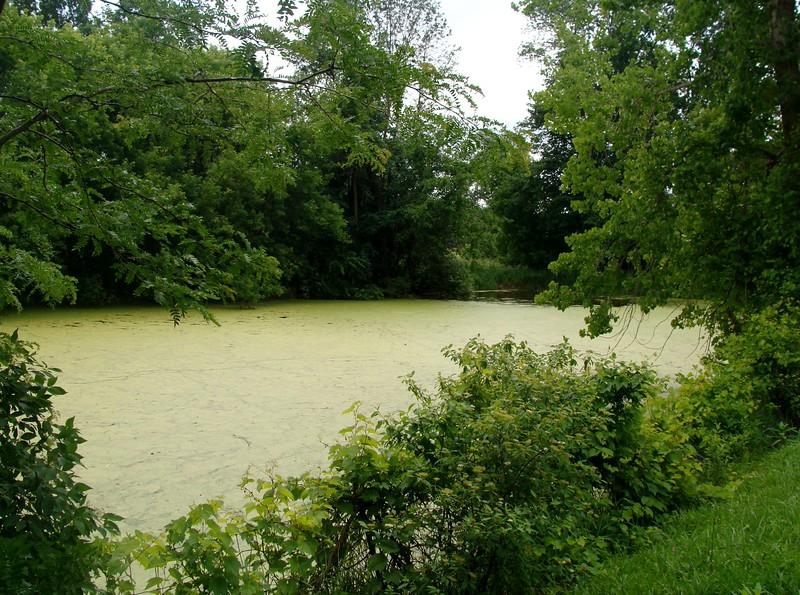 Green Pond at Centerport Aqueduct Site